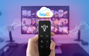 Using Tantiv4's ThingaOS™ to Create the Perfect Viewing Experience