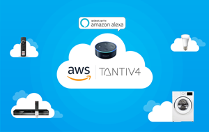 AWS Advanced Partner APN
